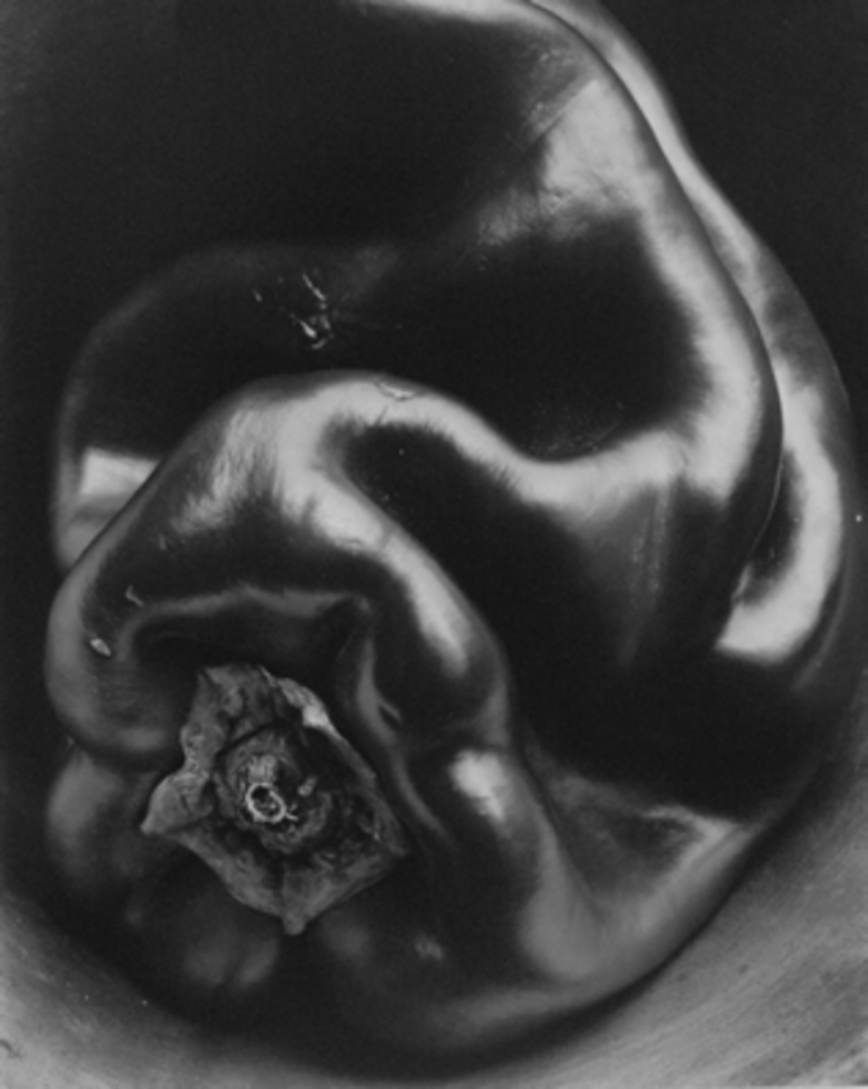 """PEPPER"" BY EDWARD WESTON IN 1930"