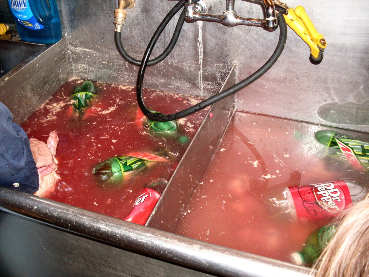 The water will get bloody. Don't bother to change it unless it gets too dark to find chicken pieces easily.