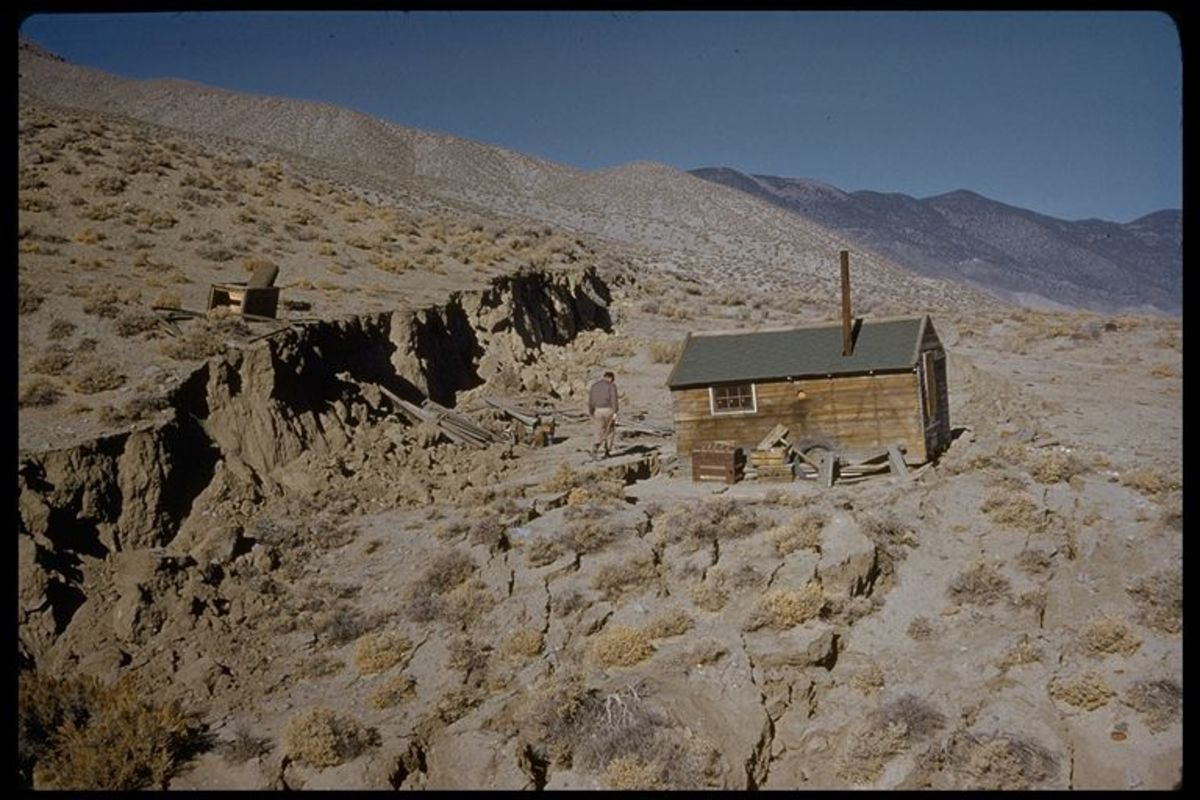 scarp formed by the 16 December 1954 Dixie Valley earthquake