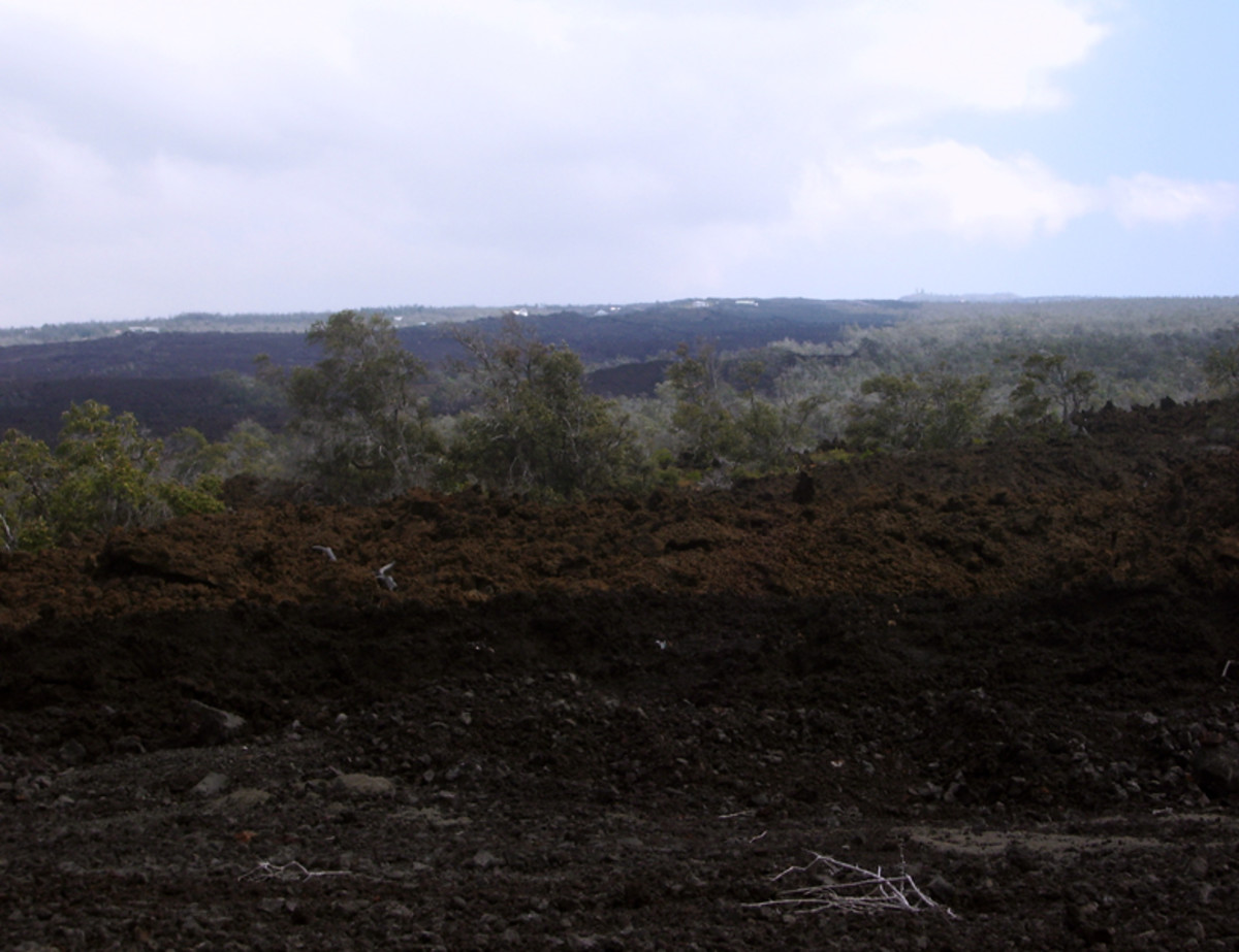 Disaster of the 1868 Lava flows