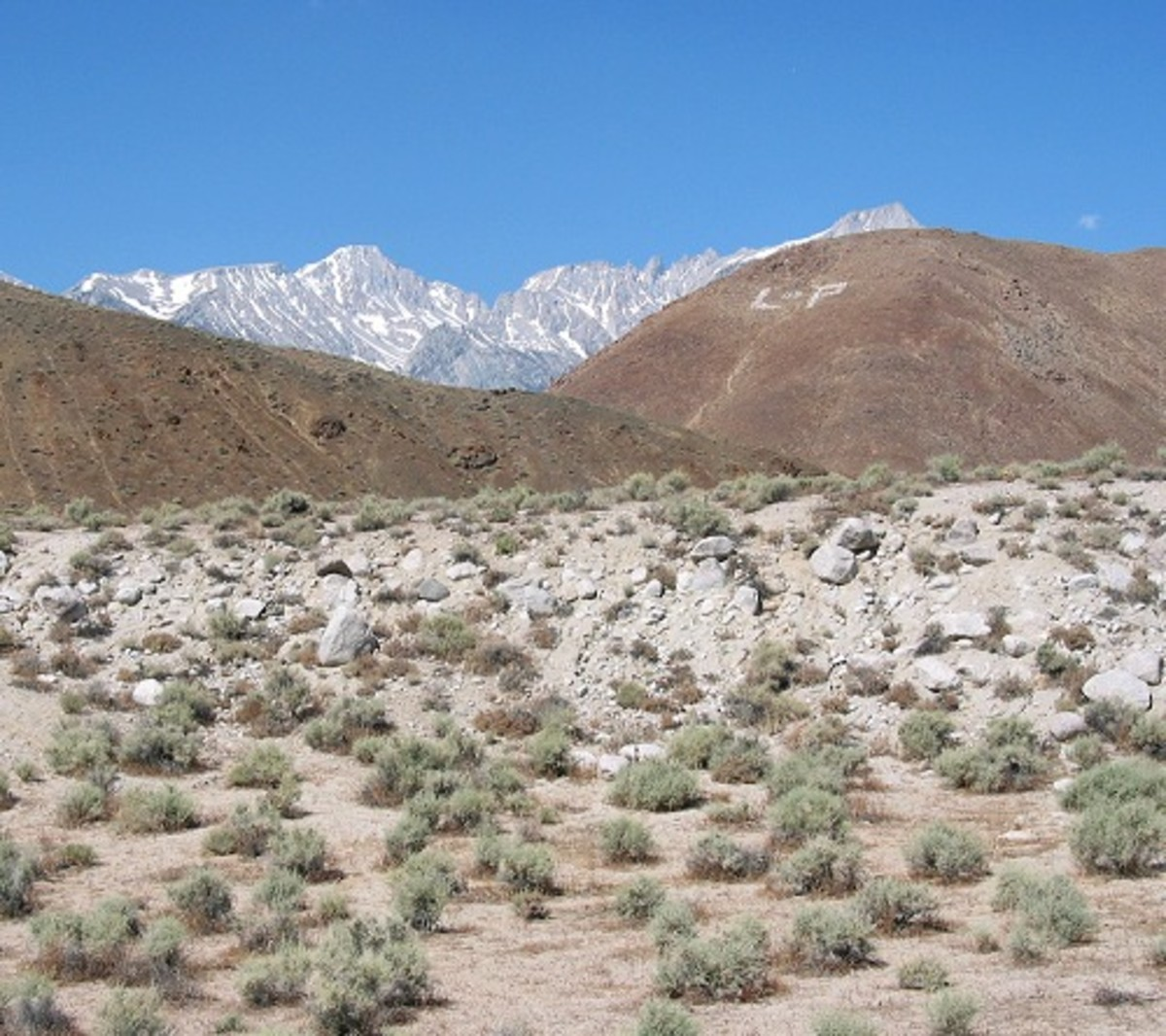 This fault scarp formed in the 1872 Owens Valley earthquake- Photo courtesy Ron Schott of Flickr under Creative Commons license