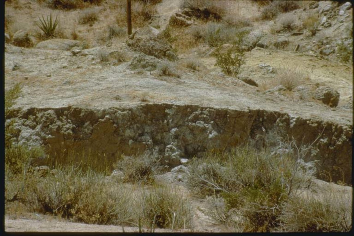 Oblique-slip fault scarp at Flamingo Heights, California-Photo credit Lindie R. Brewer, U.S. Geological Survey