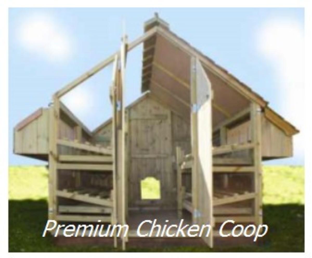 Premium Chicken Coop
