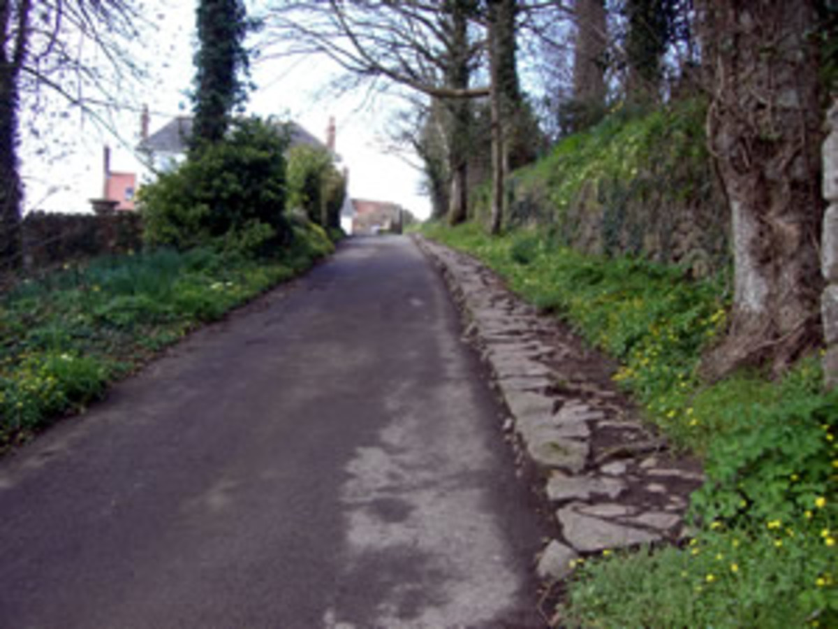 St. Andrews, picture courtesy of http://www.standrewsguernseyinbloom.org/spring.shtml