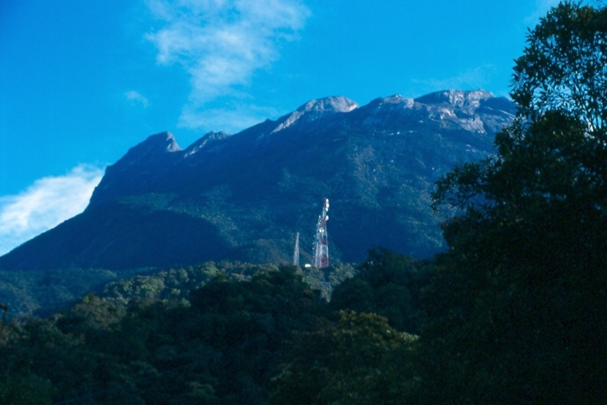 Looking up at Kinabalu from near the trail's gate (about 6,000').