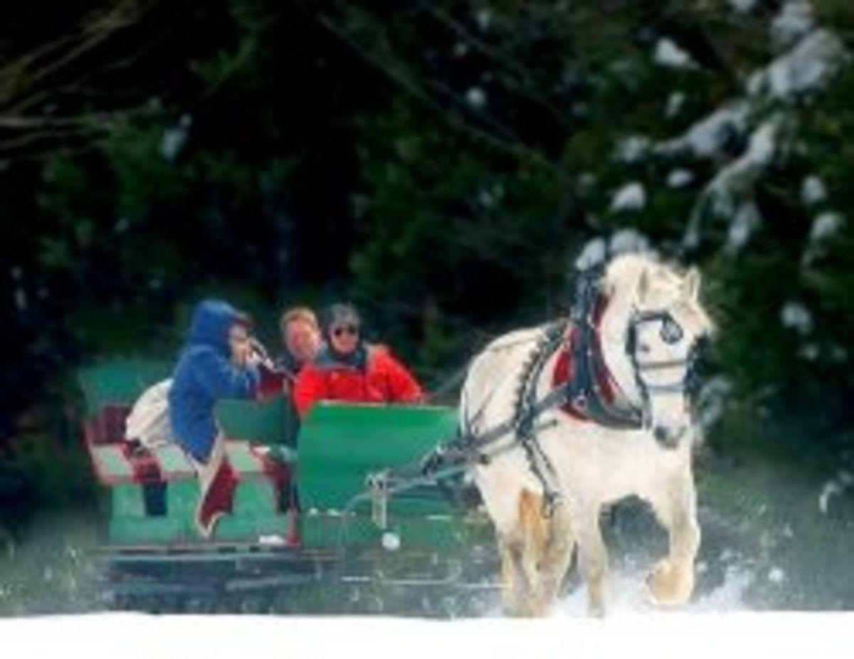 Dashing through the snow in a one-horse open sleigh