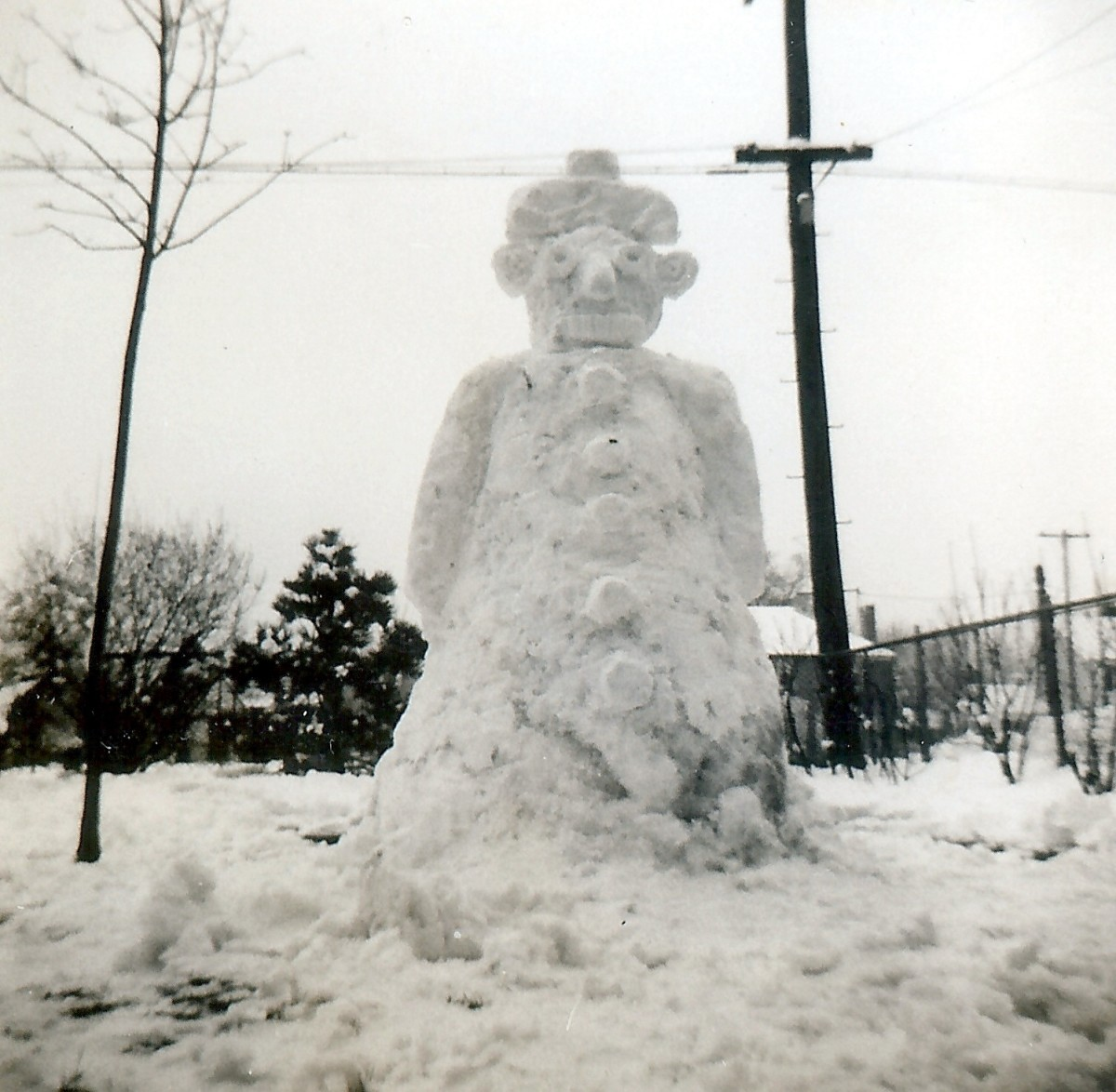 Family photo of a snowman from northern climes