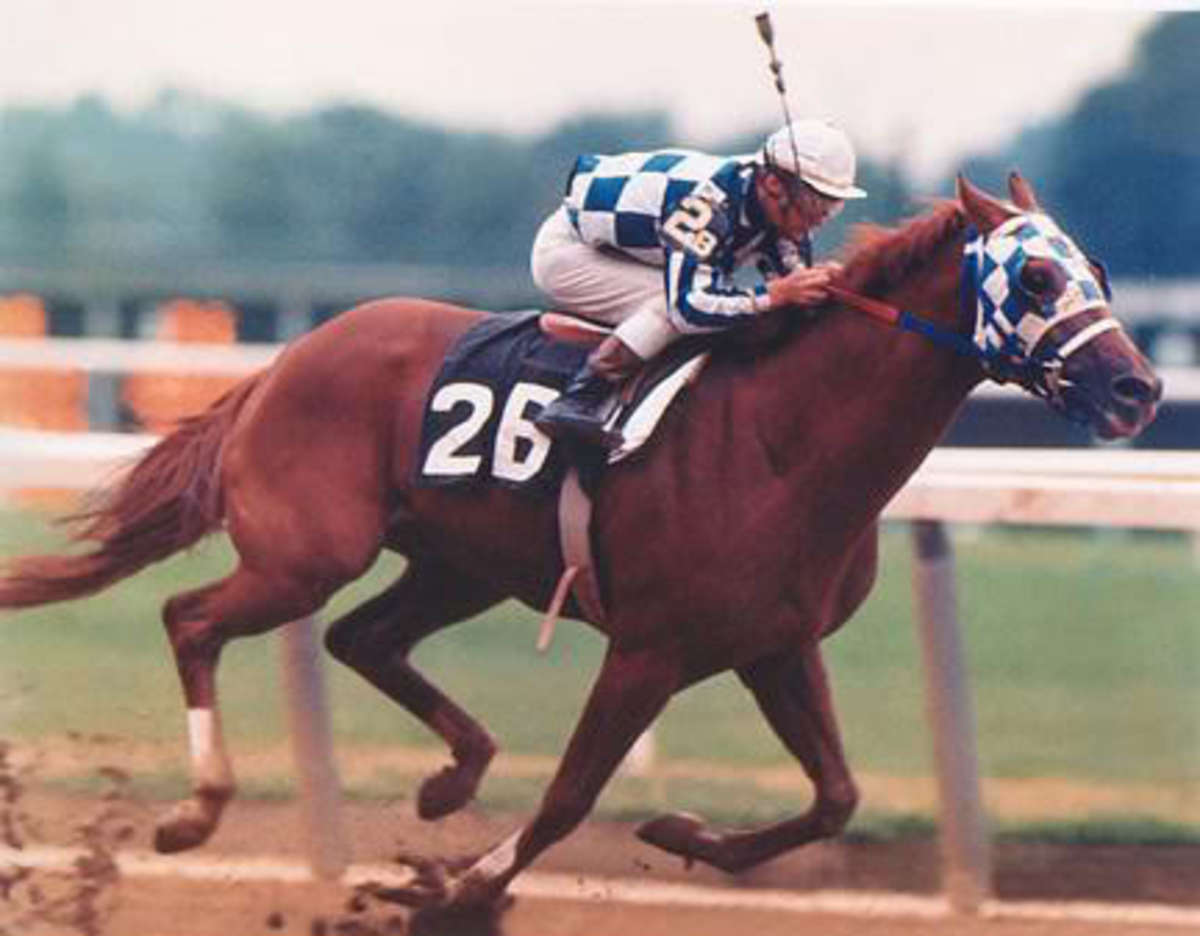 great-racehorse-secretariat