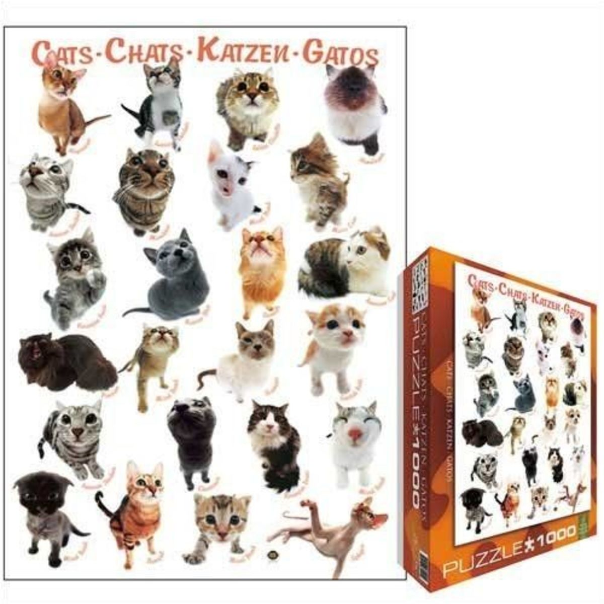 Jigsaw Puzzle by Yoneo Morita, Classic Cat Breeds, 1000 pieces