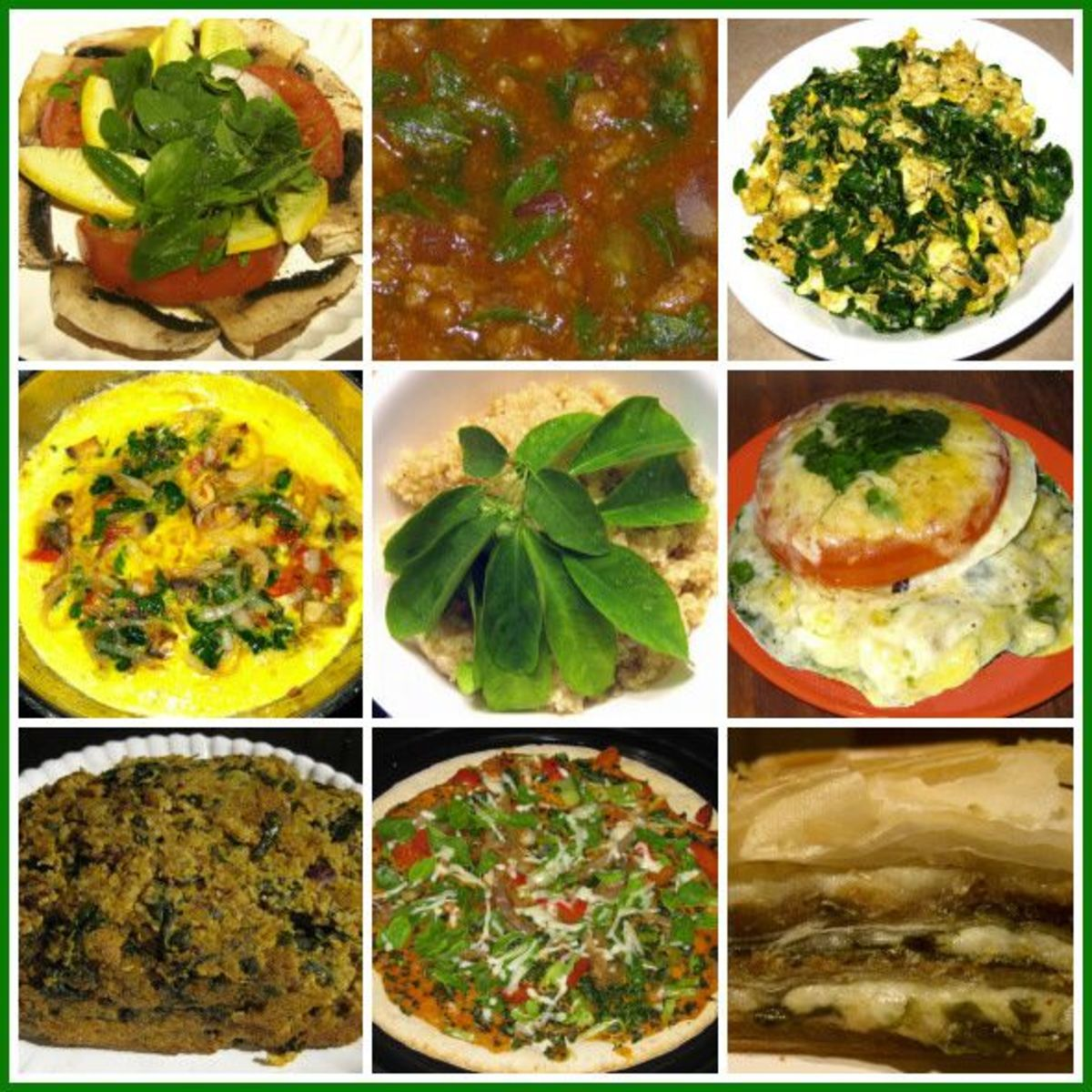 Some of the dishes we create with Moringa