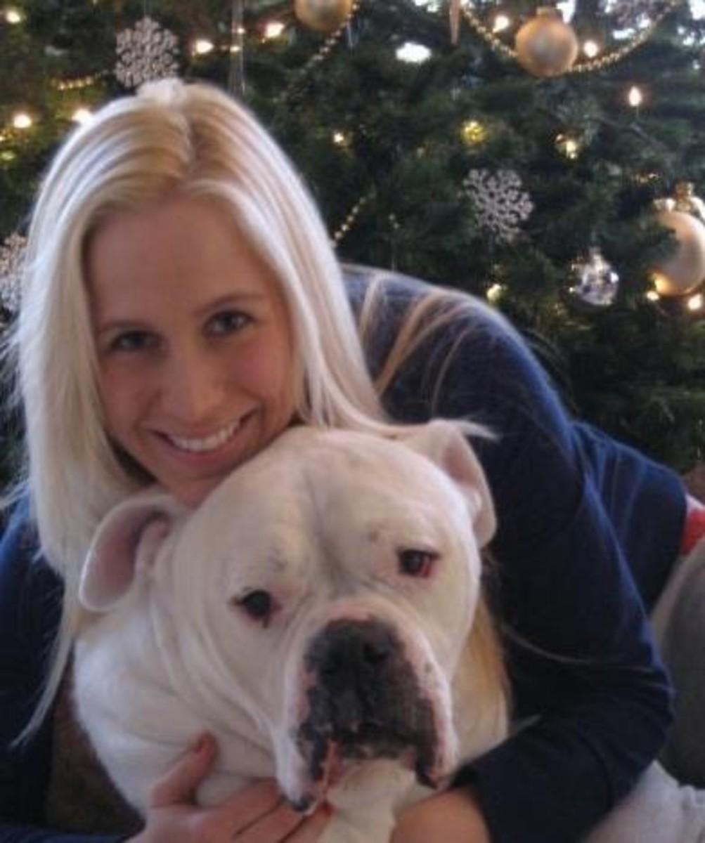 American Bulldog Happy Holidays