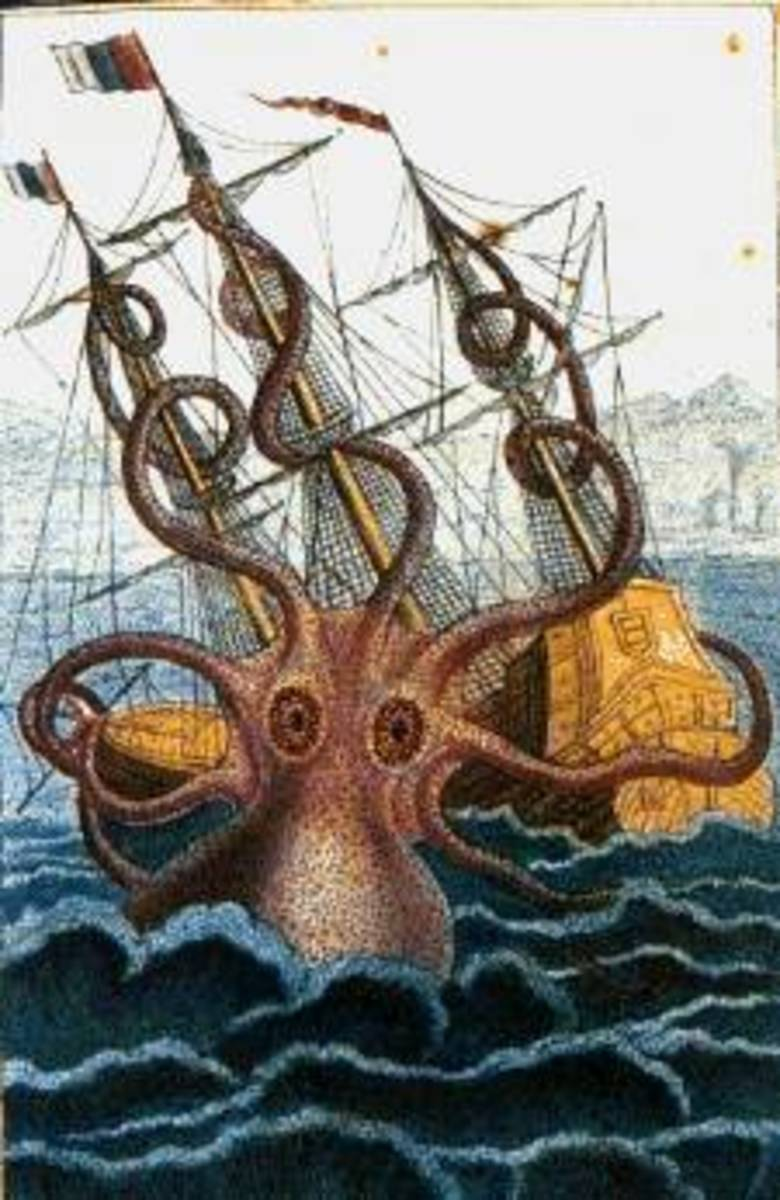 Sometimes the kraken seems more like a giant octopus than a giant squid.