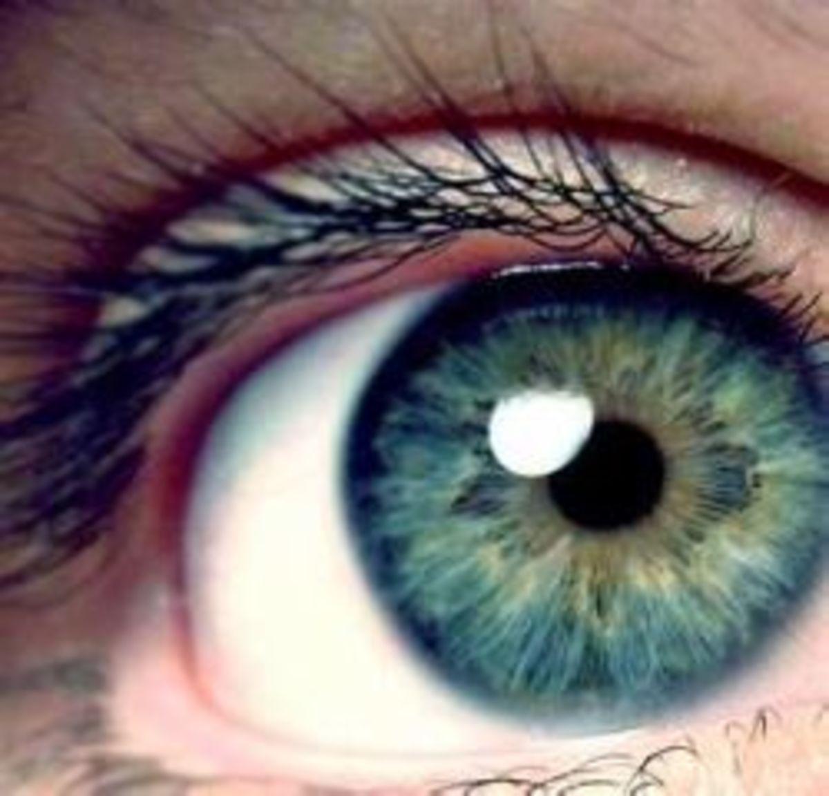 five-senses-seeing-eyes-lesson-plan