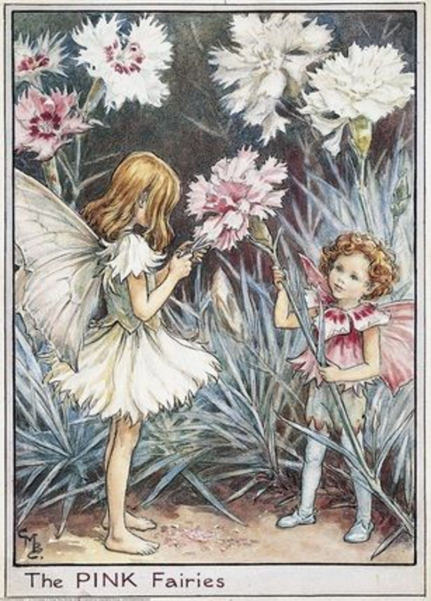 Art by Cicely Mary Barker http://www.flowerfairiesprints.com/image/228794/cicely-mary-barker-pink-fairies