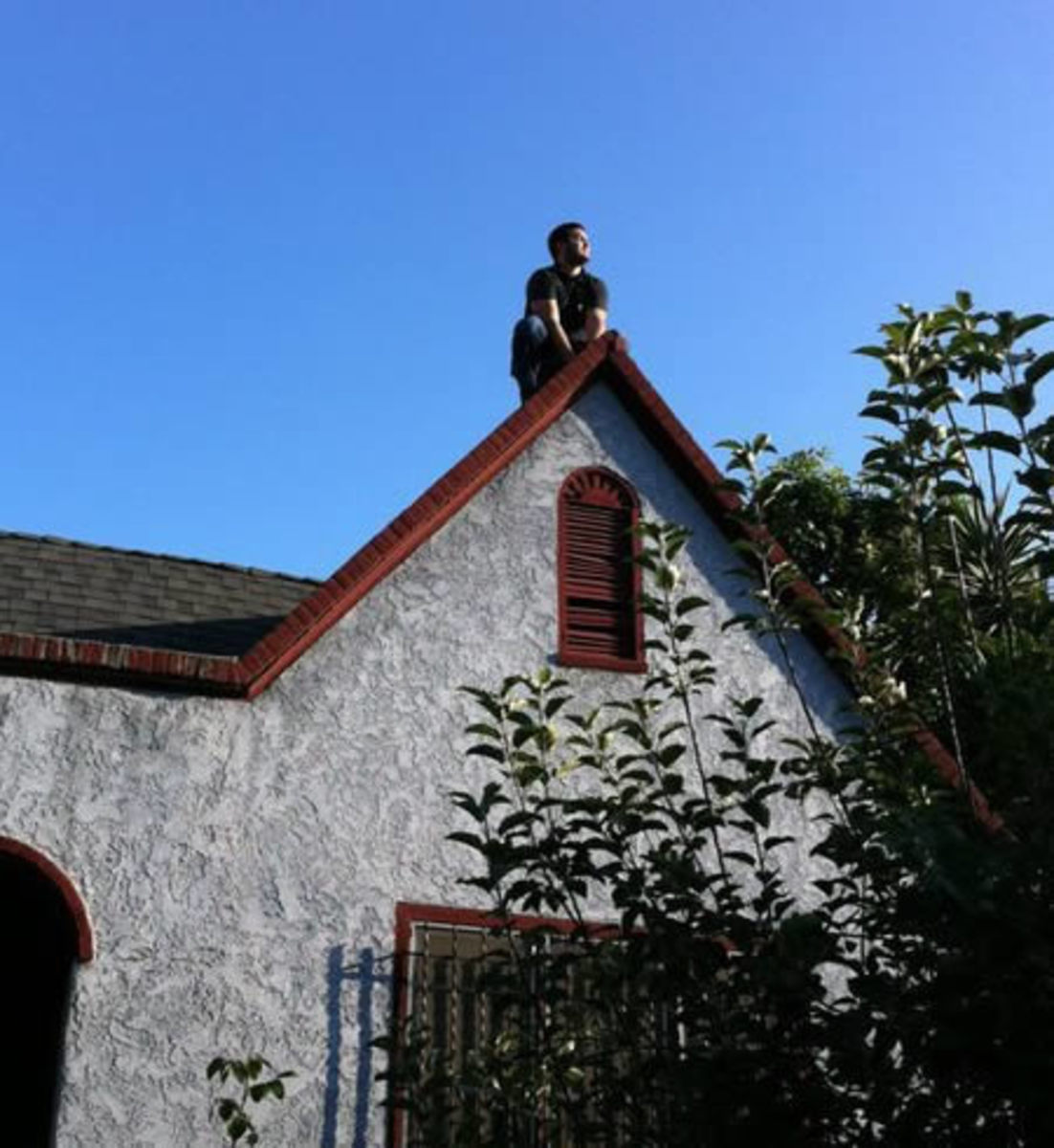 Owling on the roof of a house