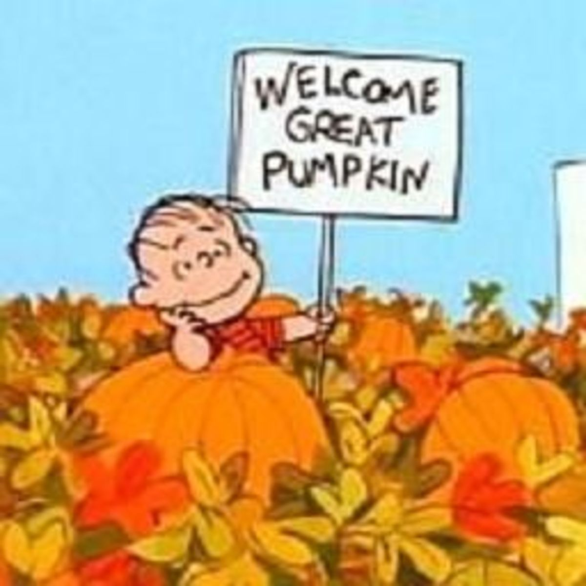 Linus awaiting the arrival of the Great Pumpkin on Halloween night!
