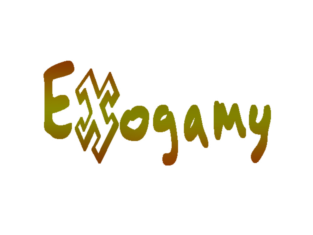 What is Exogamy