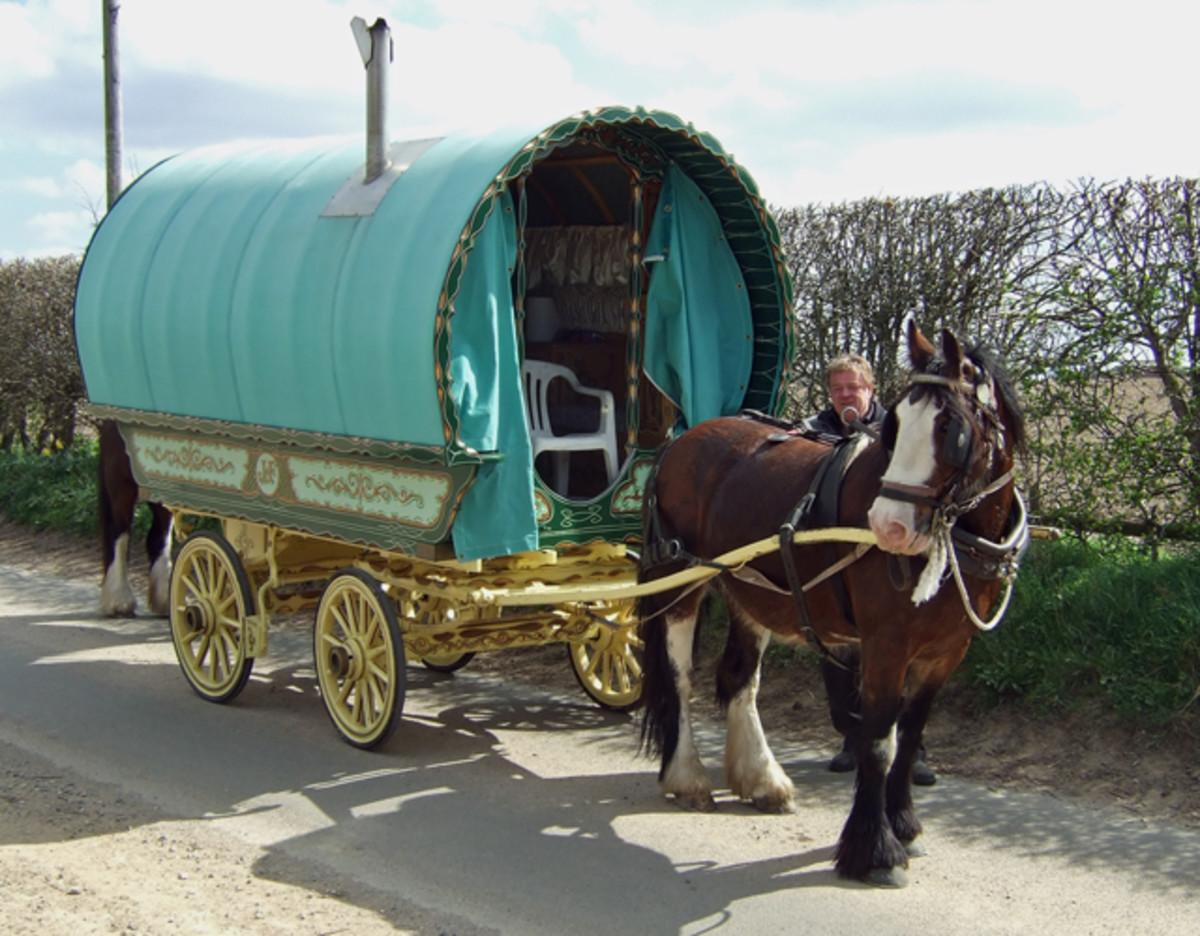 A Gypsy Horse and Wagon