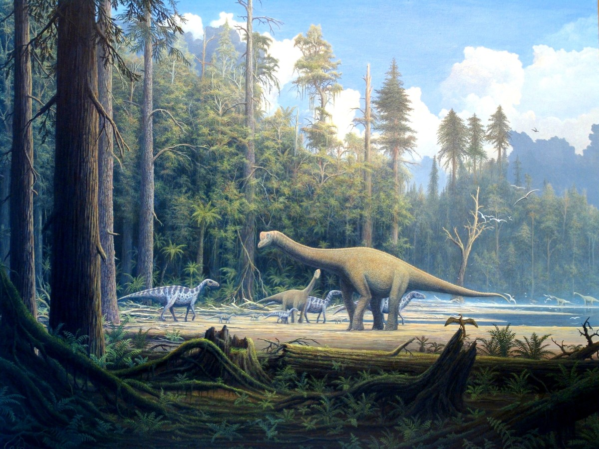Depiction of a sauropod.  The Mokele-mbembe would appear very similar to this creature.