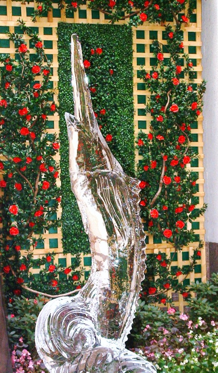 Beautiful trellis laden with roses creates an unexpected and stunning background for an ice sculpture of a swordfish on display outside the elegant Dover Downs Hotel in Delaware.