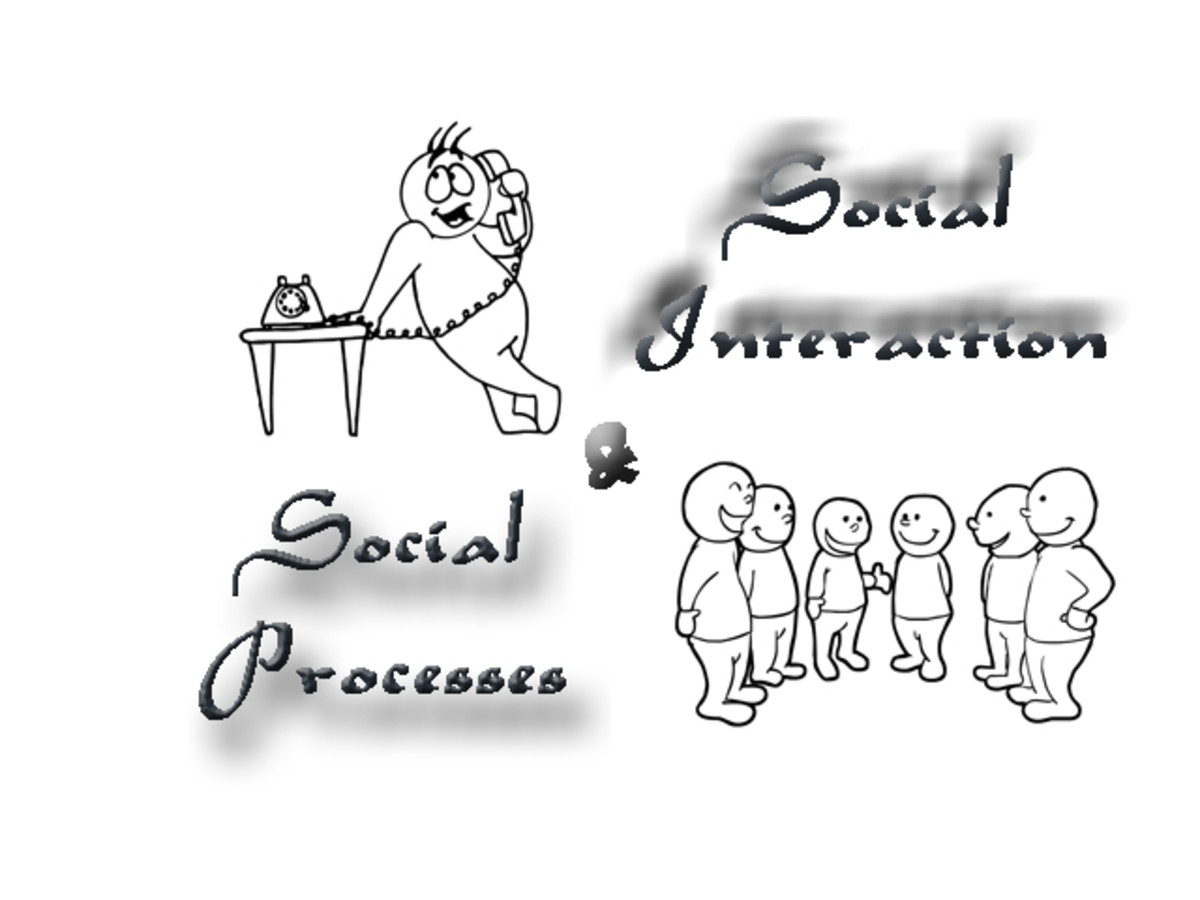 Social Interaction and Social Processes