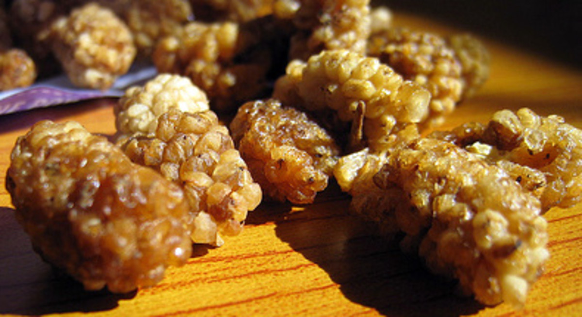 Taking dried mulberries is a good alternative to fresh mulberries to enjoy its many health benefits