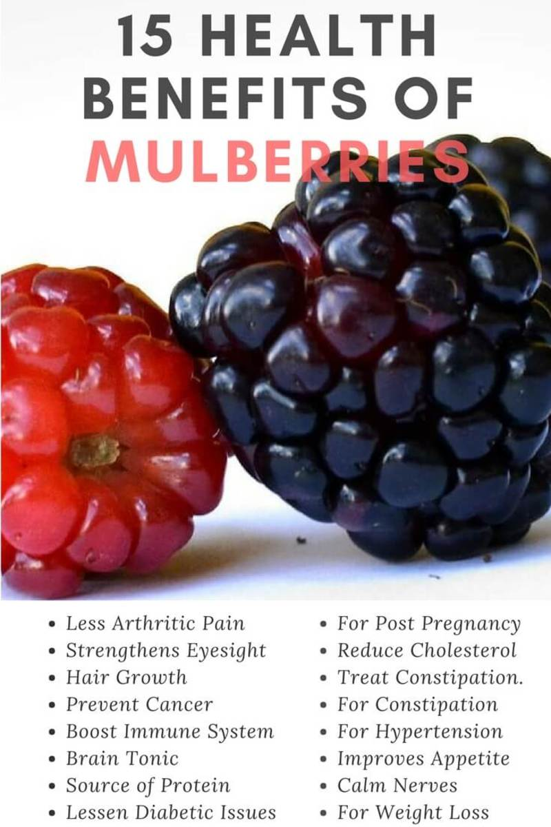 15 Health Benefits of Mulberries Infographic