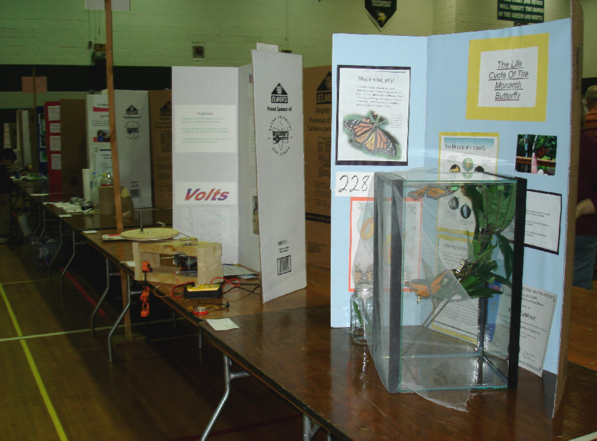 Image of a local science fair in New York, courtesy of  Stilfehler, under Creative Commons 3.0 license.