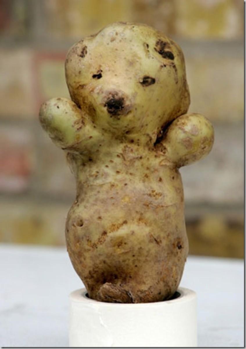 PotatoBear