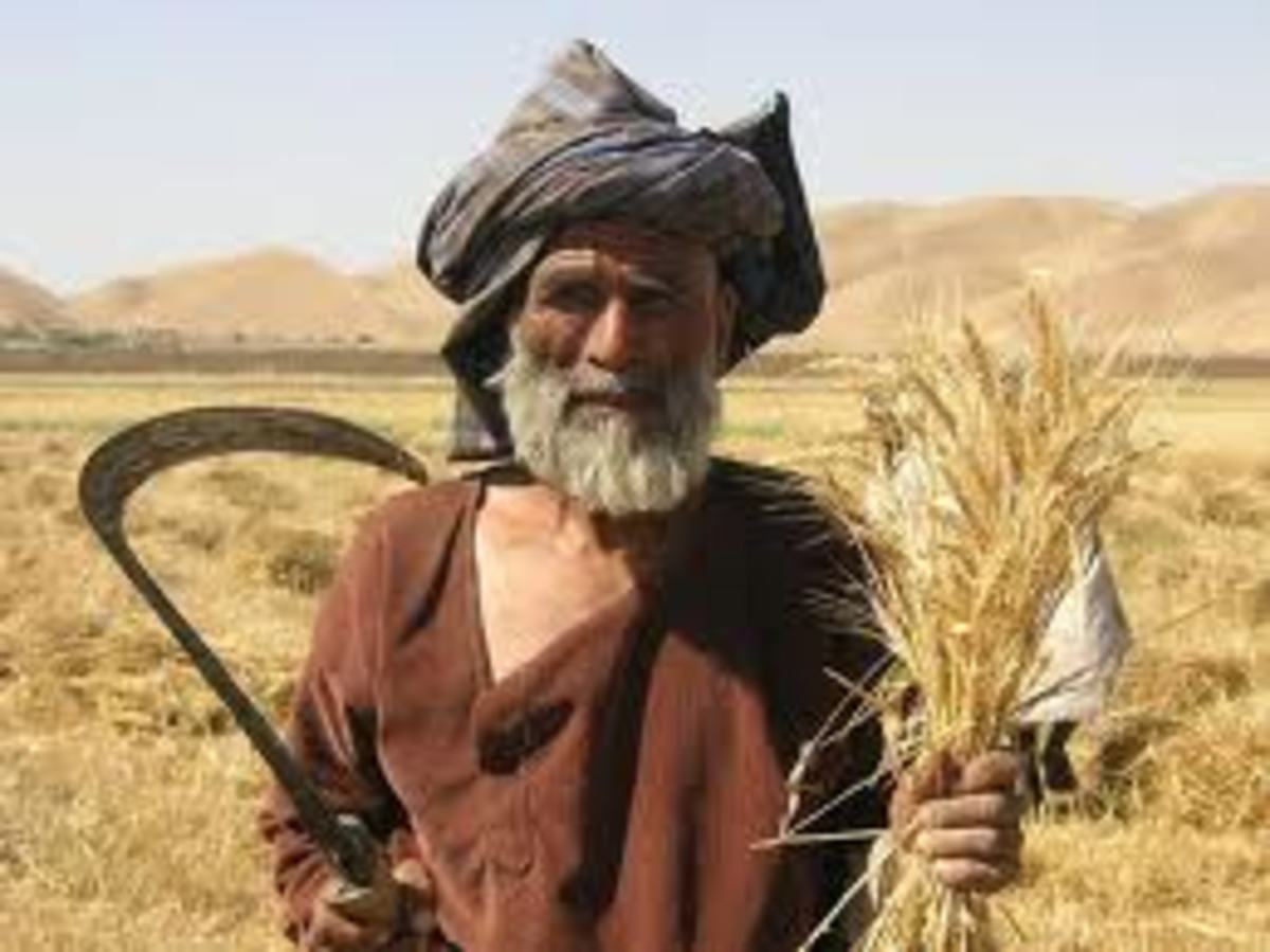 In the past life was a lot harder than today, it was very different, there were a lot of things that had to be done by hand, as you can see this is an old man harvesting wheat the old way, it would take many hours of work to produce food those days.