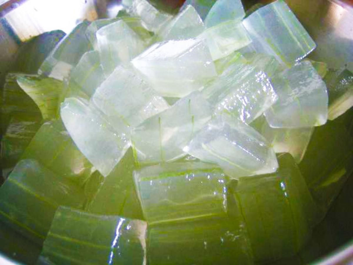 the-uses-of-aloe-vera-in-jamaica