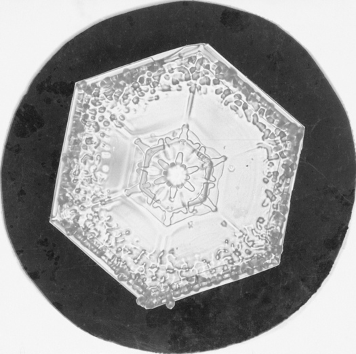 A hexagonal plate. 6 sided with a flat appearance.