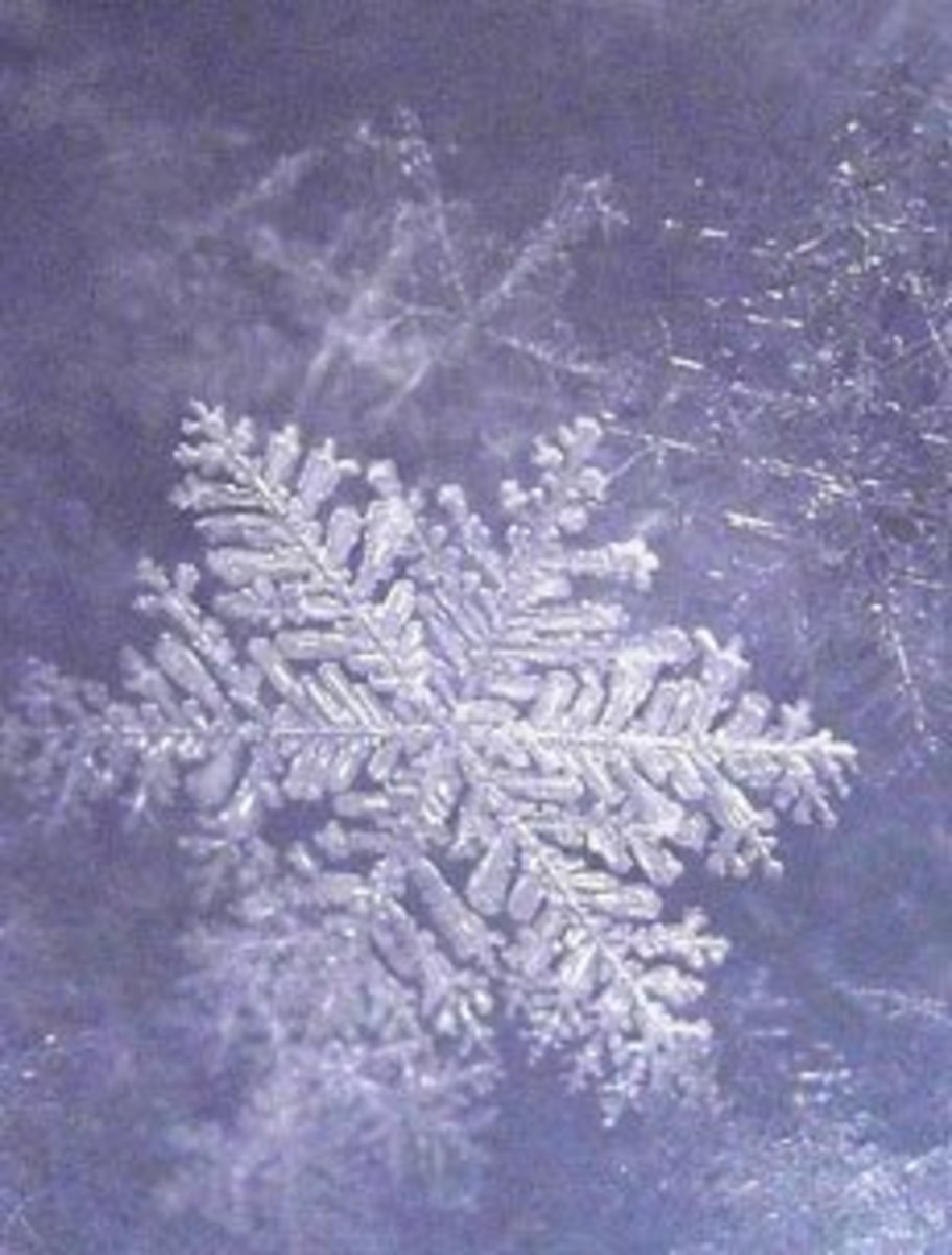 types-of-snowflakes-and-their-different-patterns
