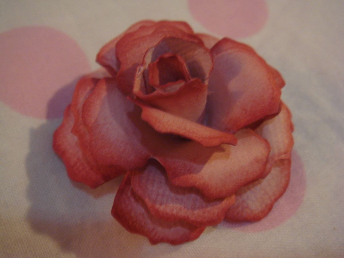 Classic rose -1