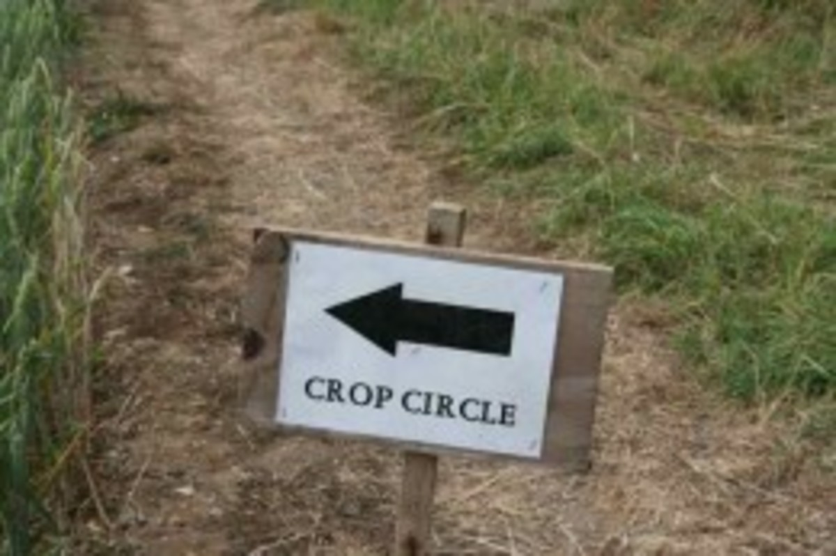 Crop Circles and why I love them