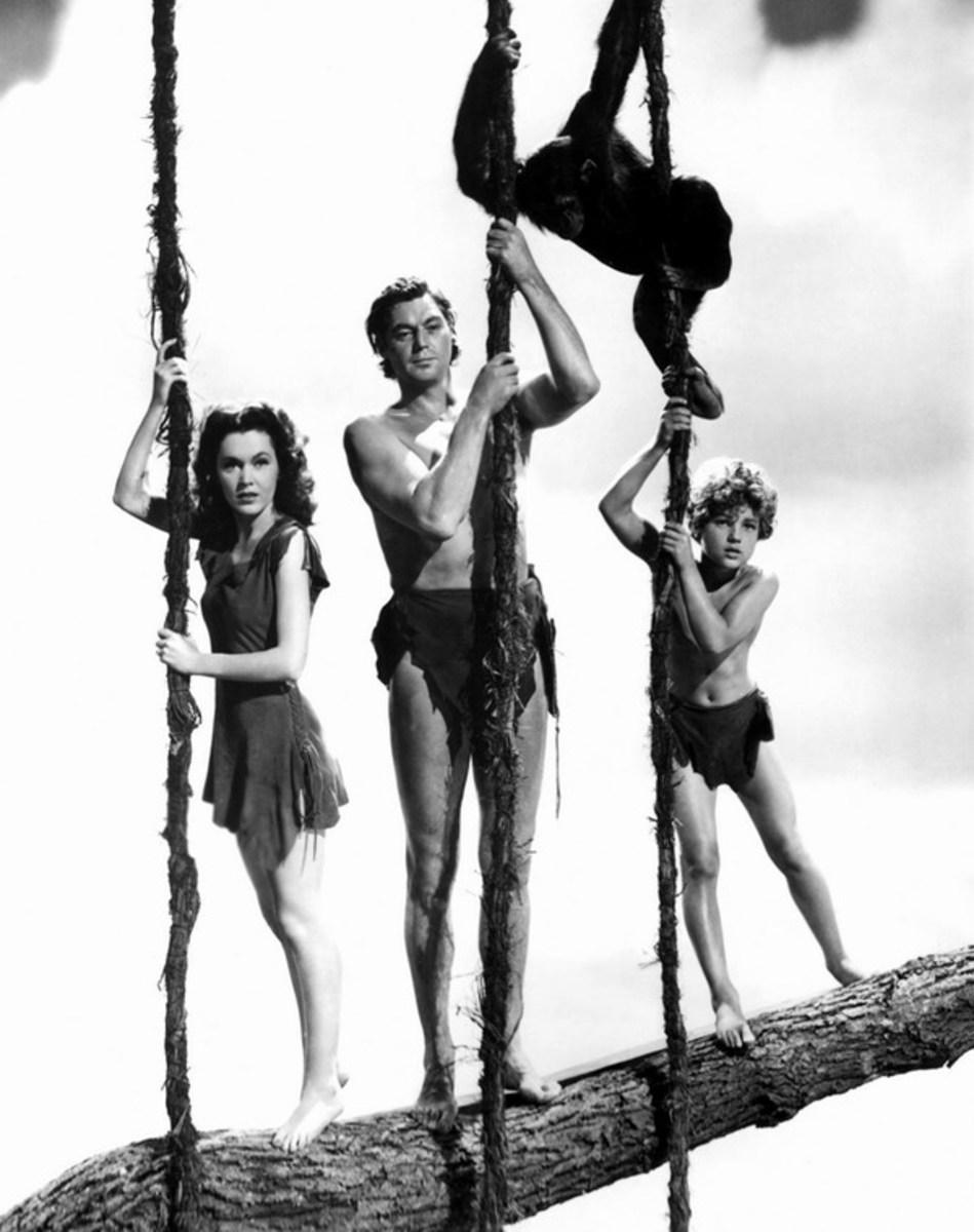 Tarzans Secret Treasure