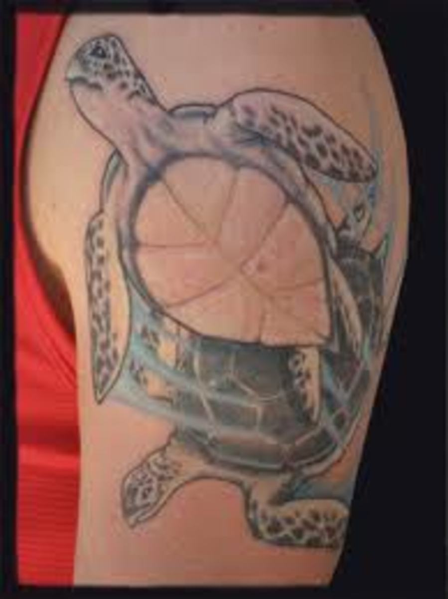 Would You Consider Wearing A Turtle Tattoo Design?
