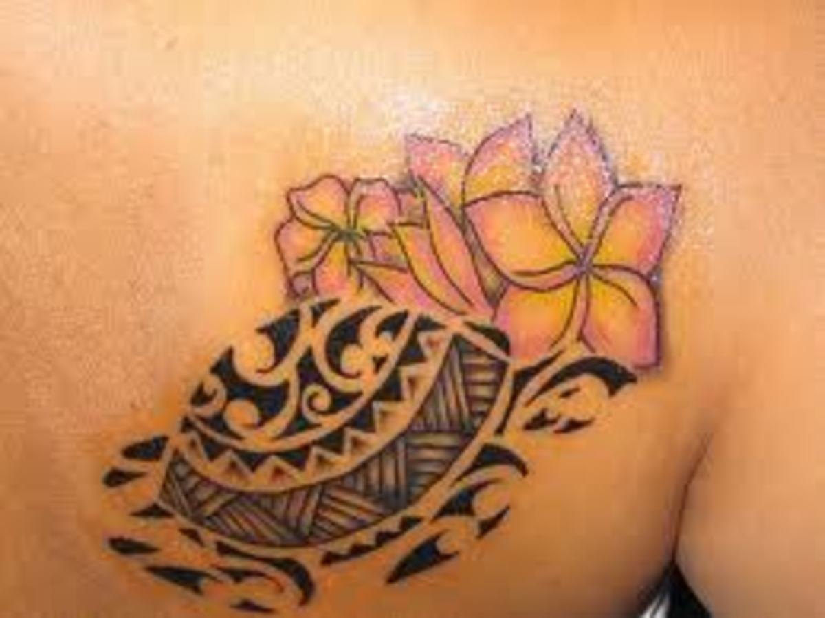 Turtle Tattoos And Turtle Tattoo Meanings Turtle Tattoo Designs And