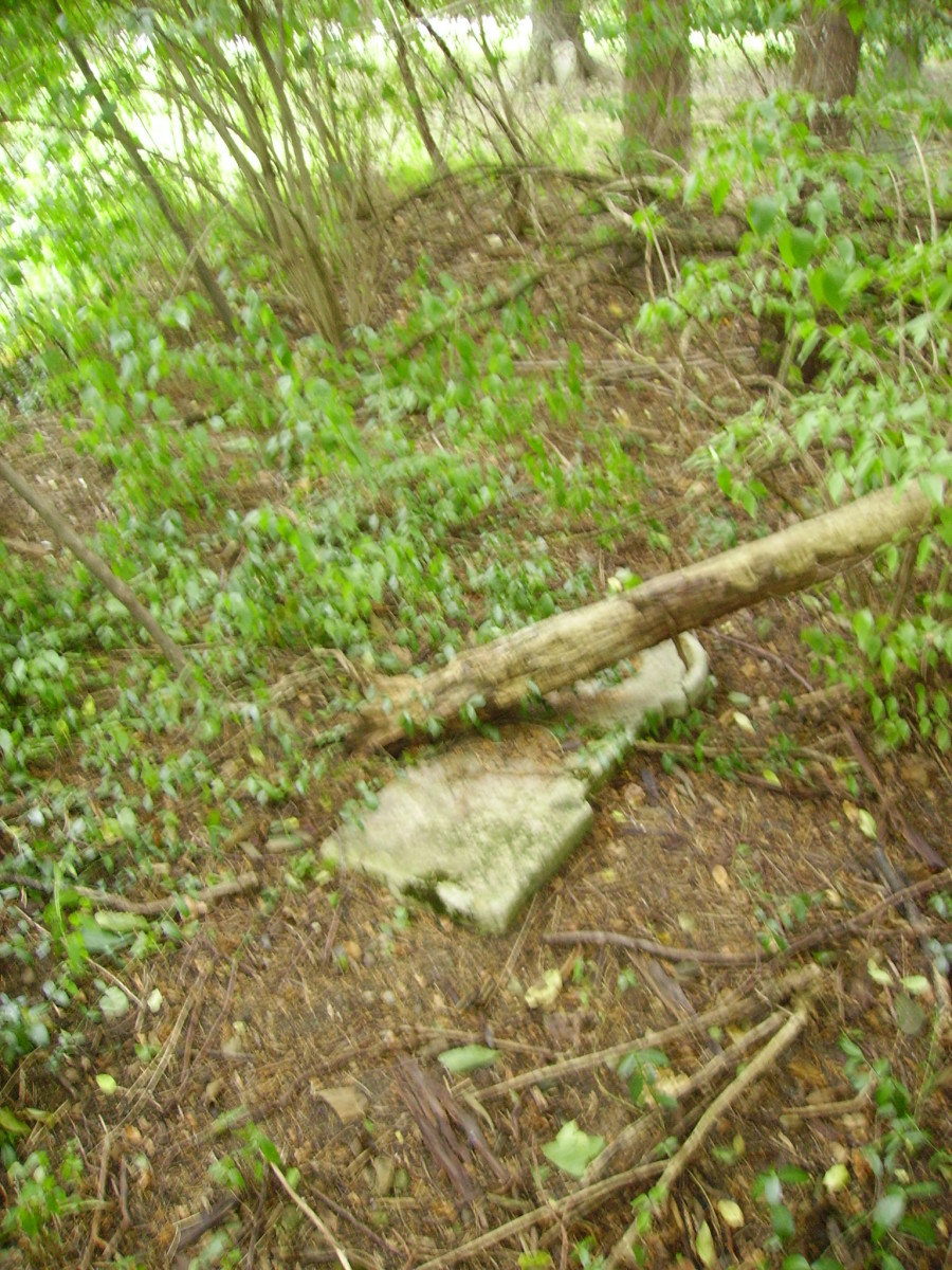 Headstone that has fallen over in the brush at side of cemetery.