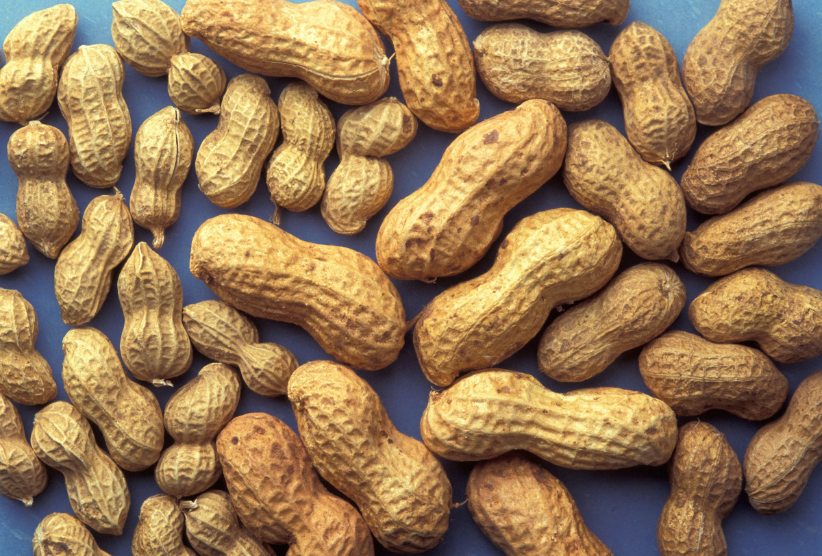 Peanuts are a good source of the B vitamin, Inositol