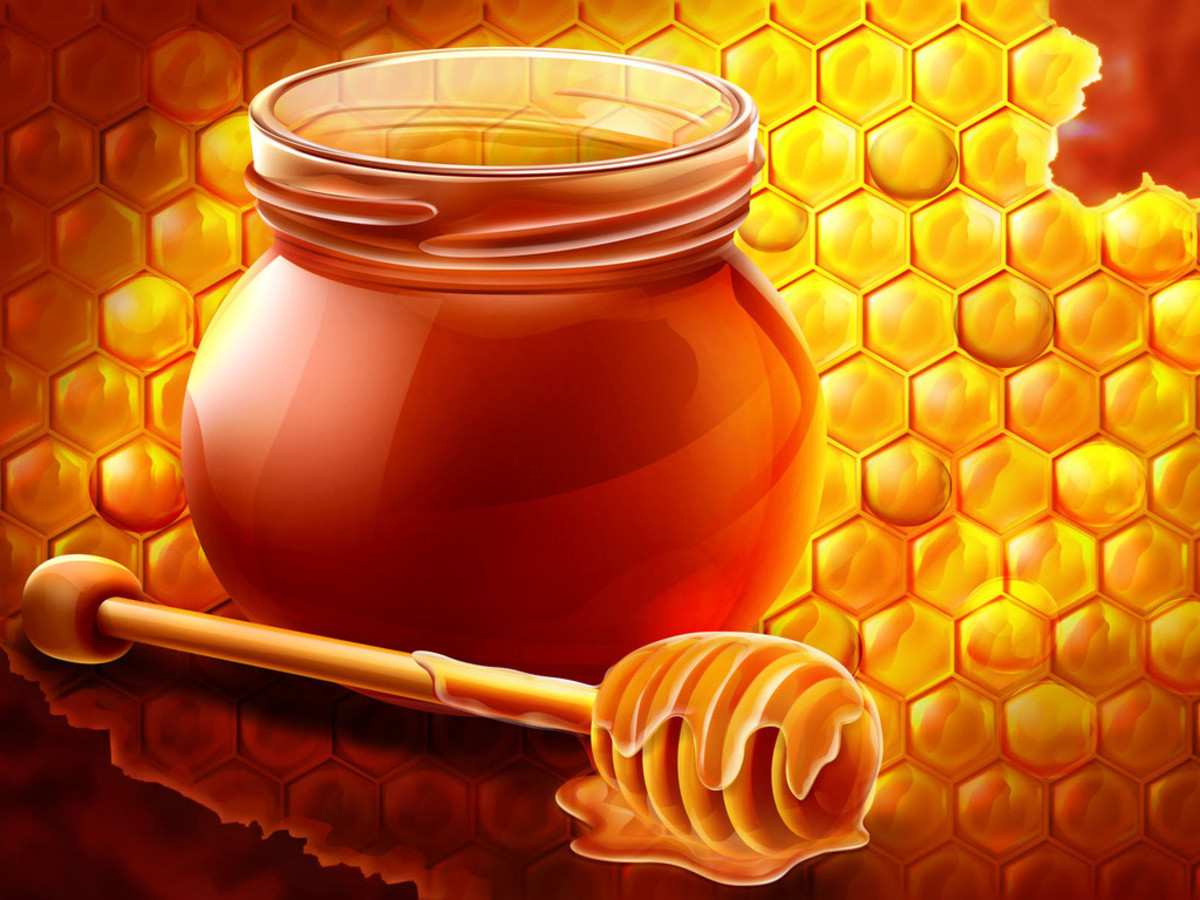 The sugars in honey are easy to burn and full of vital nutrients.