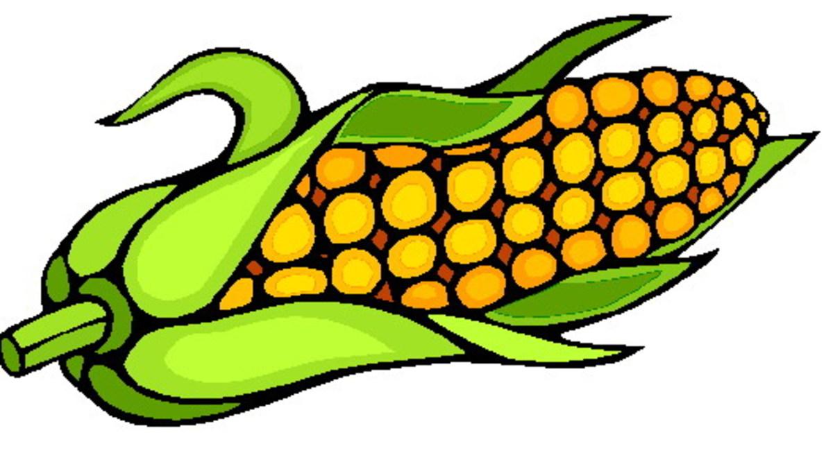 A Filipino legend of the first corn.