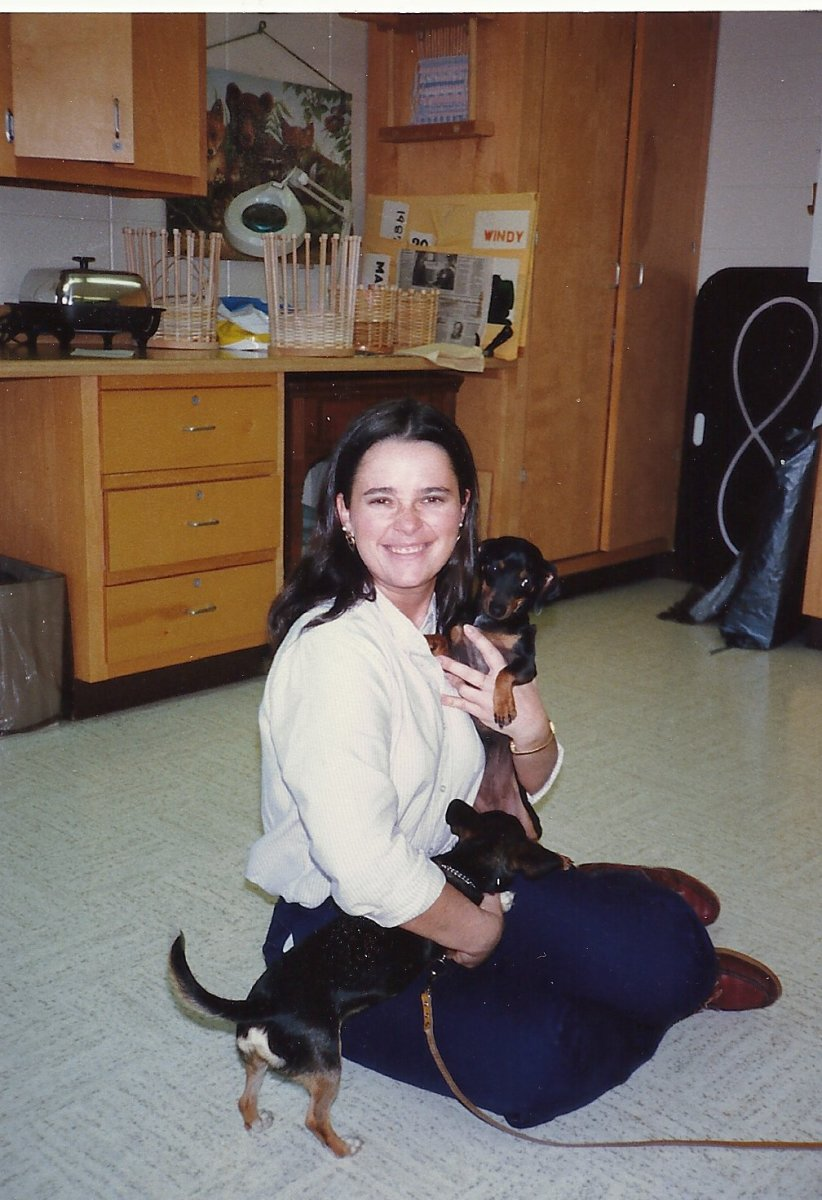 "A very young me with a couple facility ""residents"", two doxie chihuahua mixes"