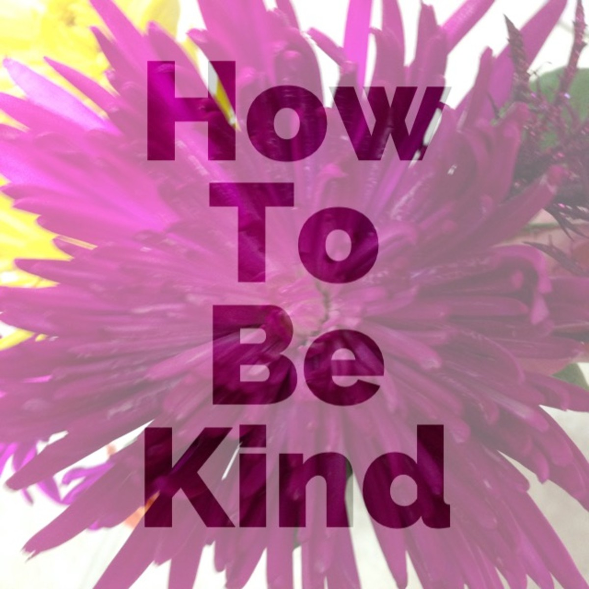 How to Be a Kind Person