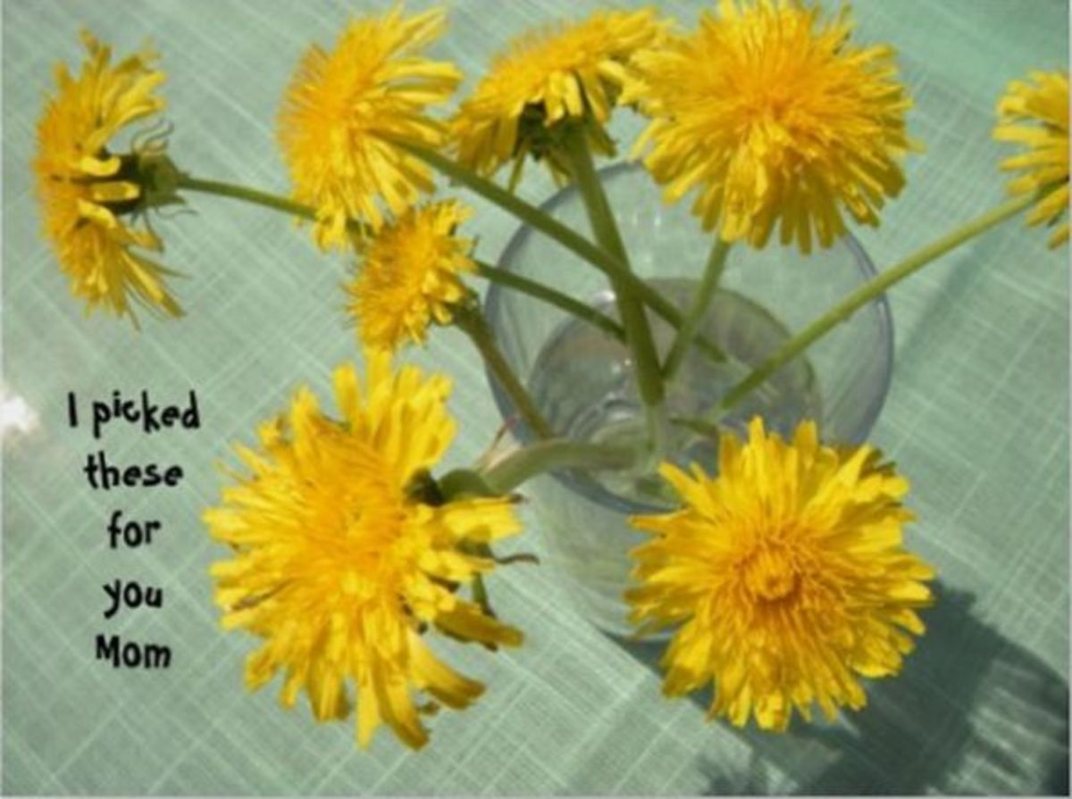 I Picked These for You Mom - Dandelion Bouquet Print