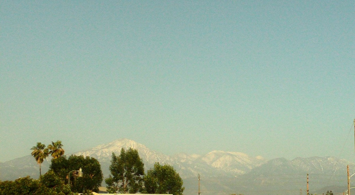 The outline of two palm trees with the snow capped San Gorgonio Mountains.