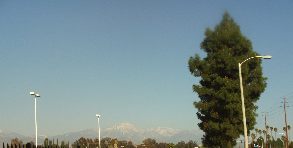 Snow on the San Gorgonio Mountains in the distance.