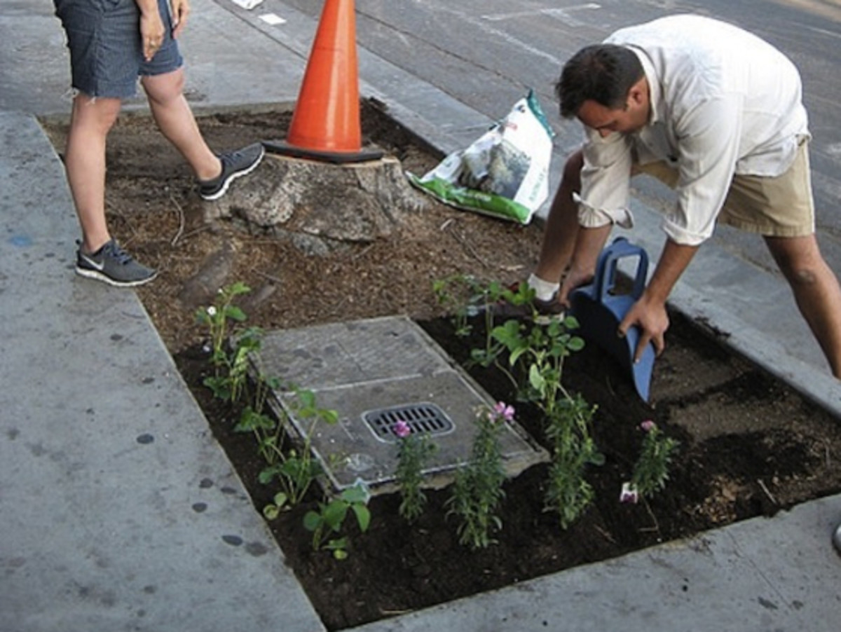 Guerrilla gardening can include creating vegetable plots or simply adding green and colour to an urban landscape