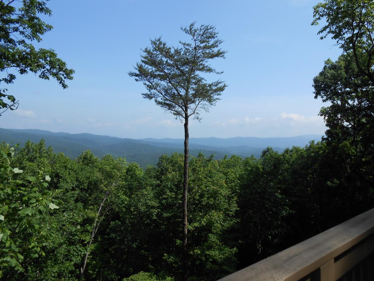 View from Big Canoe, GA