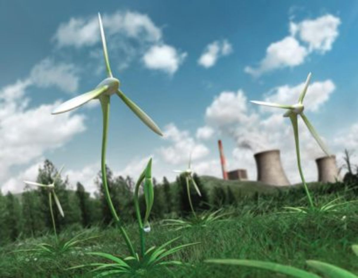 French Renewable Energy - Useful Phrases and Vocabulary